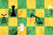 Lições da Petrobras