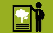 IBGC sugere melhorias na gestão de risco ambiental