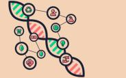 Genética sustentável